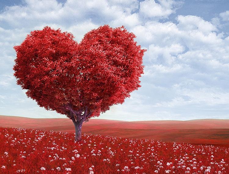 Le cadeau parfait pour la St-Valentin, un parfum pour femme